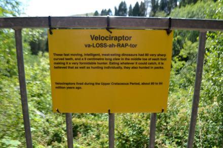 velocraptor
